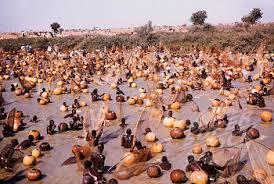 Argungun fishing festival