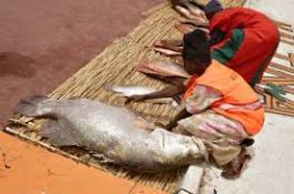 Argungun fishermen